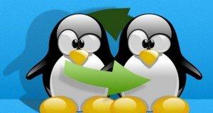 SWAP файл linux